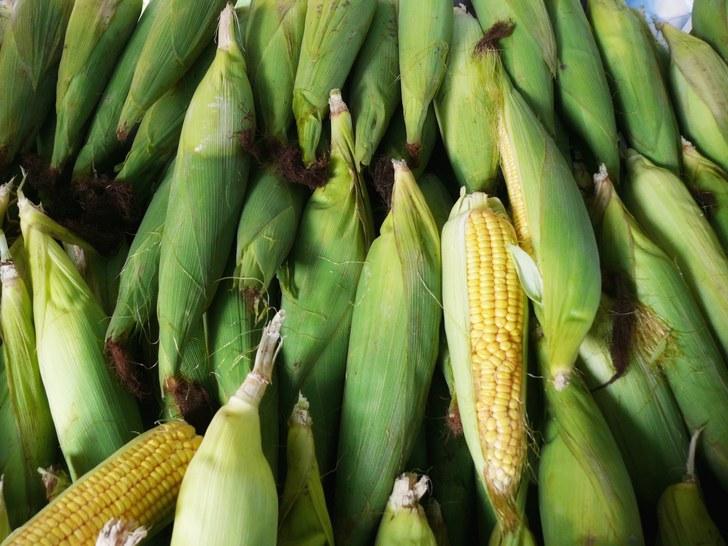 Cara rebus jagung
