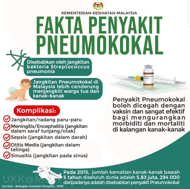 Vaksin pneumokokal