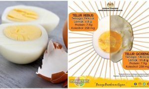 khasiat telur rebus