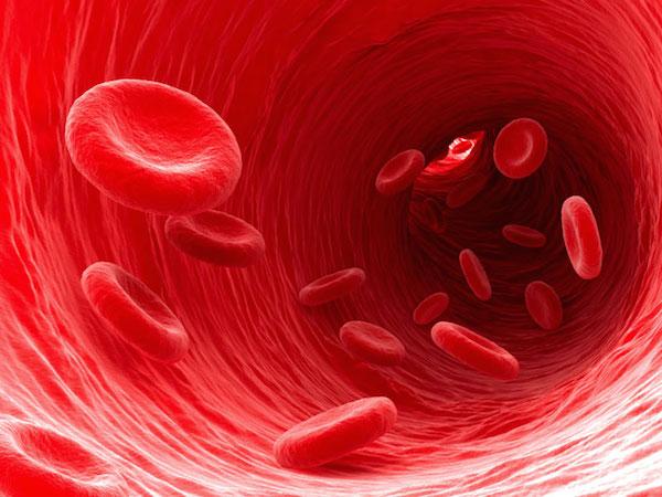 Ini sel darah merah