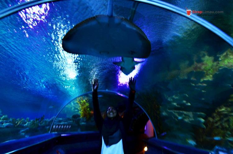 Aquaria KLCC Tumpuan Pelancong dan Pelajar - 014