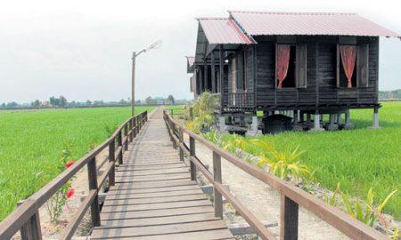 Homestay Malaysia