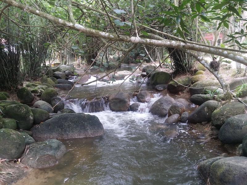 mandi-sungai-kalumpang-resort