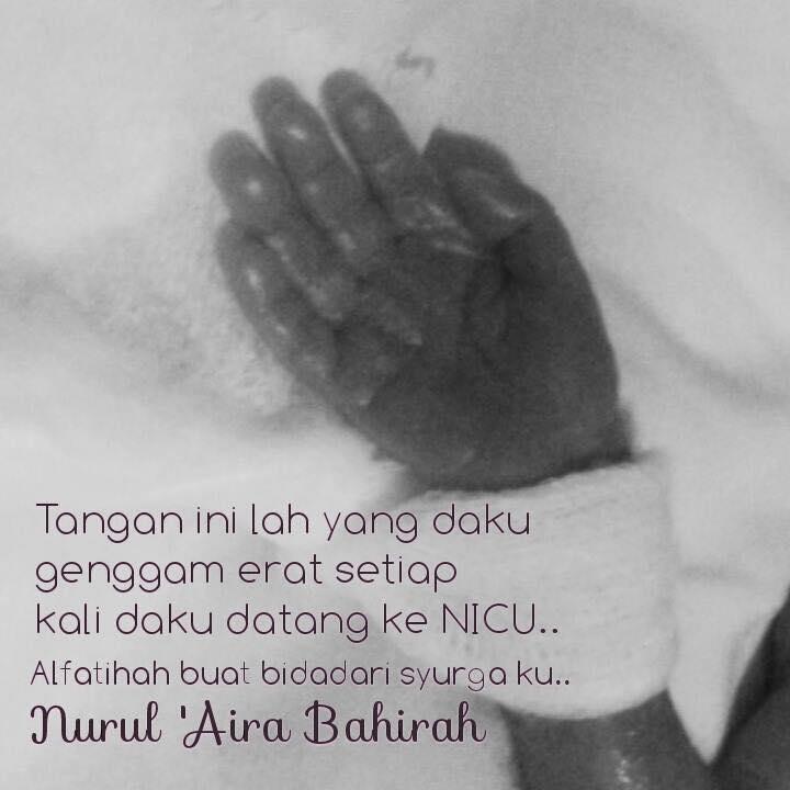 Foto Kredit: Facebook Puan Nurul Aisyah