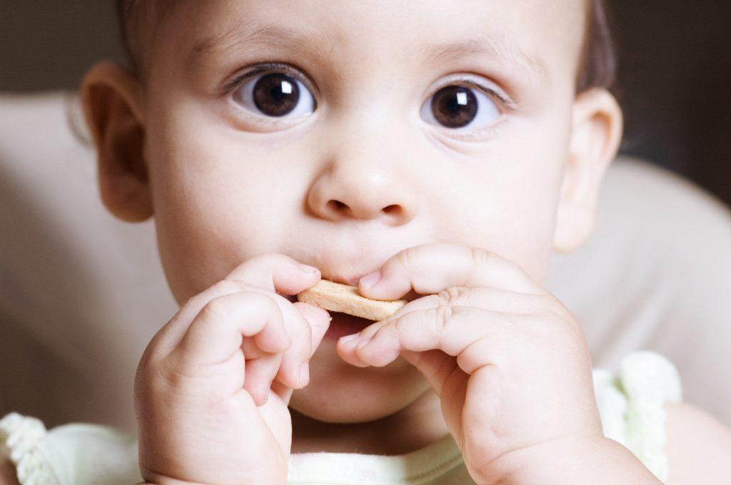 resepi biskut bayi tanpa gula