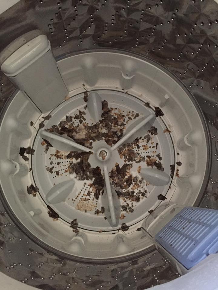 cara-bersihkan-mesin-basuh-3