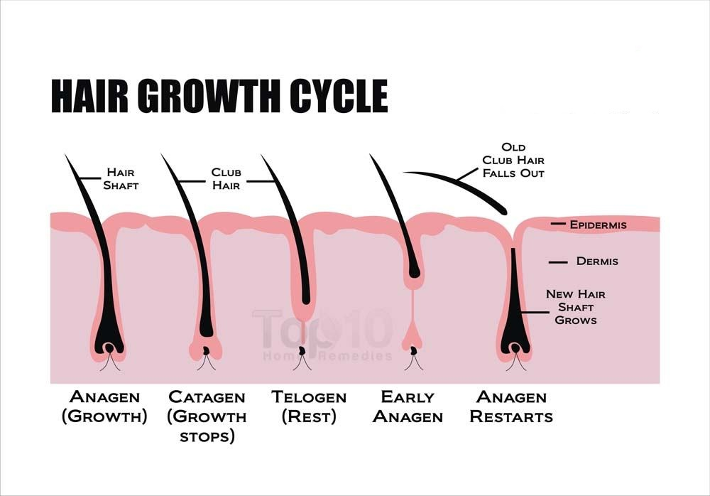 rambut bayi lambat tumbuh